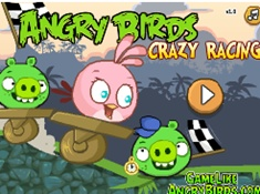 Angry Bids Crazy Racing