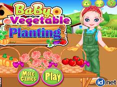 Baby Vegetable Planting