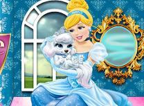 Cinderella Palace Pet Caring