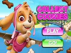 Collect Cookies