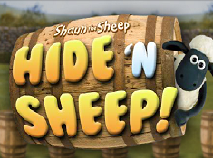 Hide N Sheep