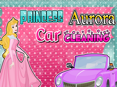 Princess Aurora Car Cleaning