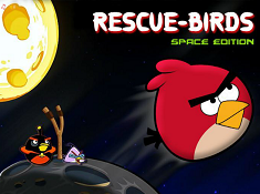 Rescue Birds Space Edition