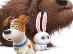The Secret Life of Pets 6 Diff