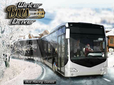 Winter Bus Driver