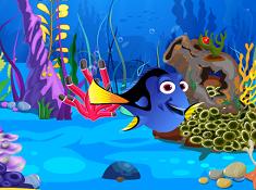 Dorys Fish Tank