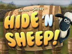 Hide N Sheep