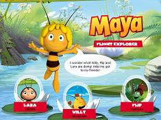Maya Flight Explorer