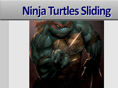 Ninja Turtles Sliding