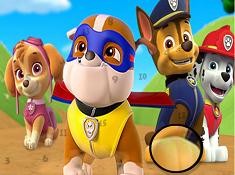 Paw Patrol Hidden Numbers