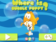 Where is Bubble Puppy